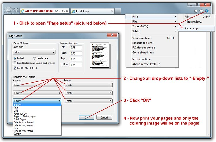 Print settings for Internet Explorer